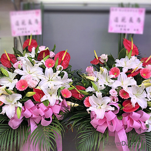 Ac021 Dement Brilliance Elevated Flower Gift One Pair Taiwan Florist